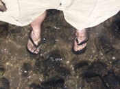 Me, standing in the Sea of Galilee. 'Sea' is generous - this is not a very big lake at all.