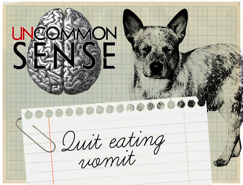 Quit Eating Vomit Image