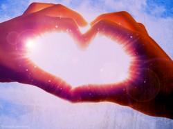 L - Heart